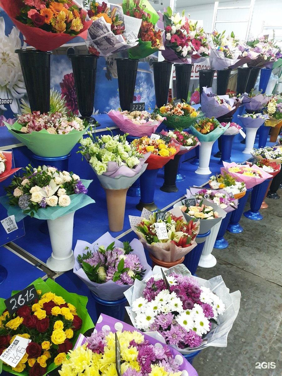 Оптовый склад цветов на пулковском шоссе камелия каталог, базы