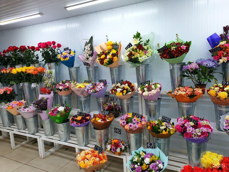Сменник, цветы оптовая база спб московское шоссе