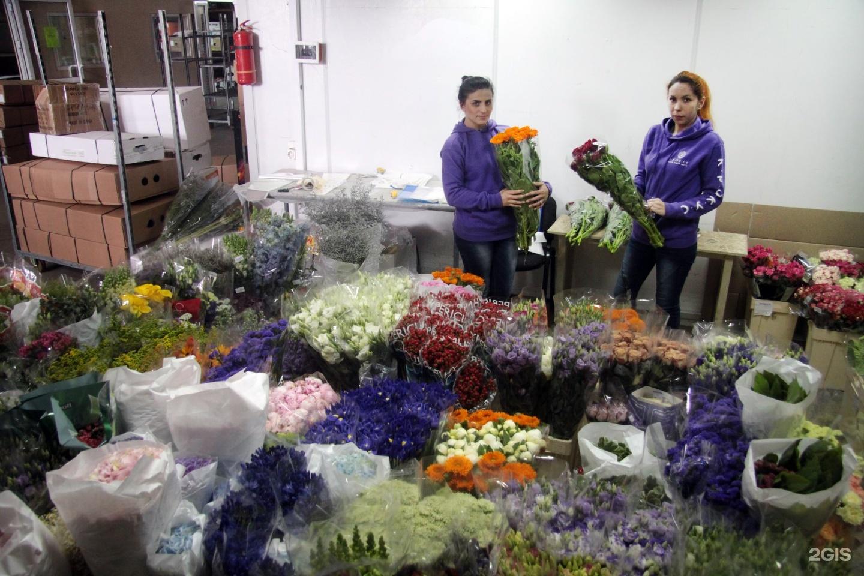 Казань цветы оптом роторная, доставка москва