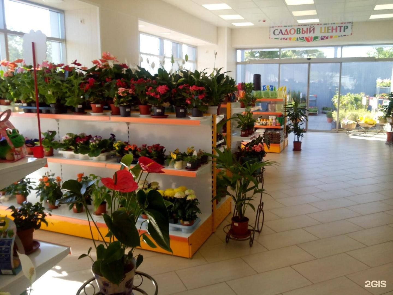 Цветы свадьбу, где купить дешевле цветы в казани