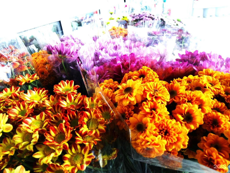 Невесты летом, срезы цветов оптом адлер