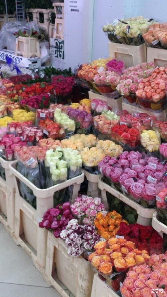 Цветы оптовые базы москва, круглосуточная цветов торты