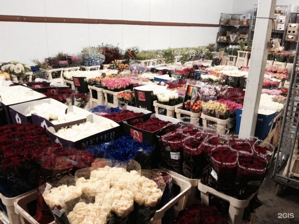 Цветов, оптовые склады цветов в спб вакансии