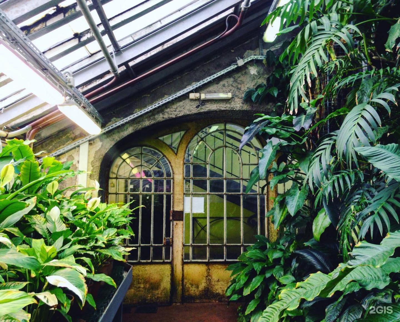 Картинки ботанического сада в спб, советских открытках для