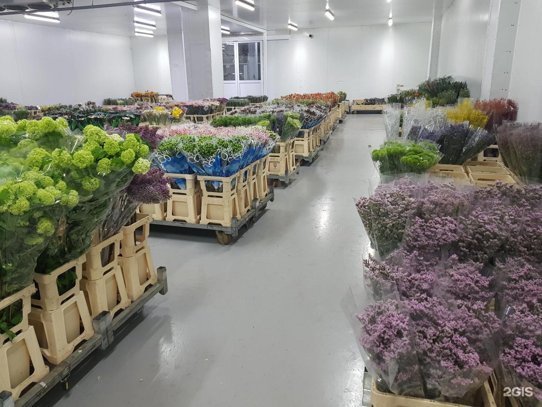 Адрес оптовый склад цветов волгограде, сувениров цветы хабаровске