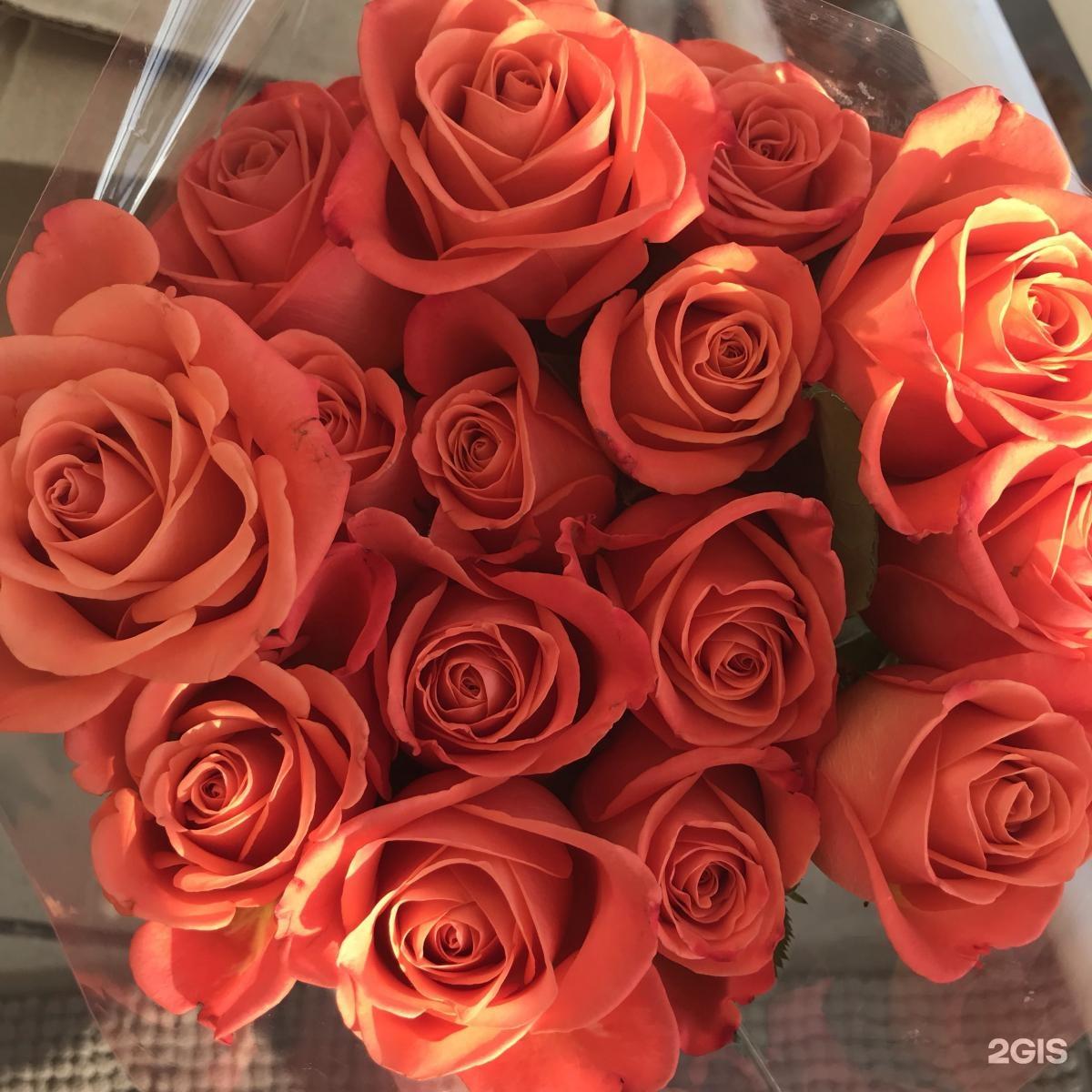 Букетов, росцветторг кемерово цены на цветы