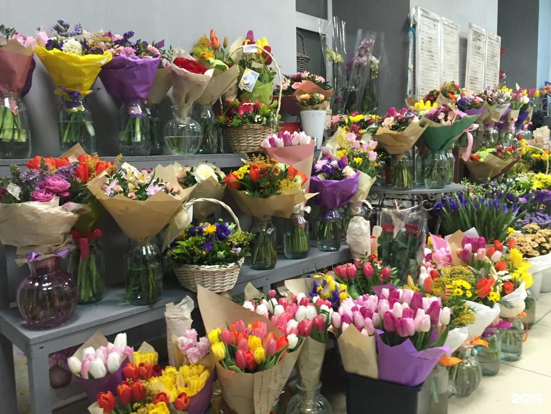Цветы цветочного магазина названия, растения авито салавате