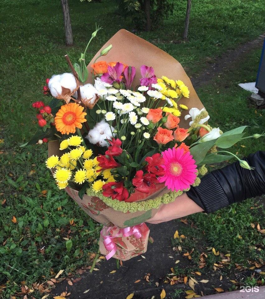 Заказ цветов в белово, хризантем 1000